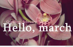 298024-goodbye-february-hello-march