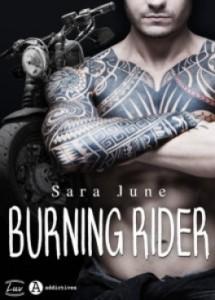 dark-soldiers-tome-3-burning-rider-1171156-264-432